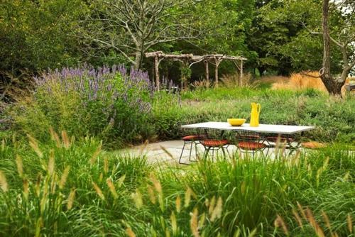 Aus der Wildnis nach Hause pflanzen anbau lila wohlduftend blumen