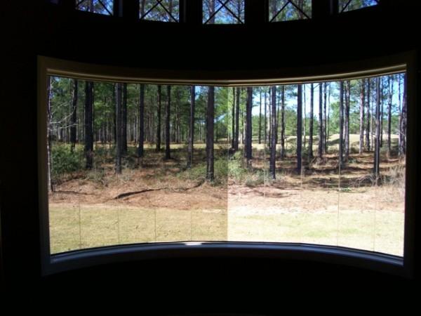 High-Tech Fensterfolien für Ihr Haus wald umgebung hinterhof
