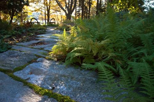 Landschaftsarchitektur und Design mit nachhaltig gewonnenem Holz beton