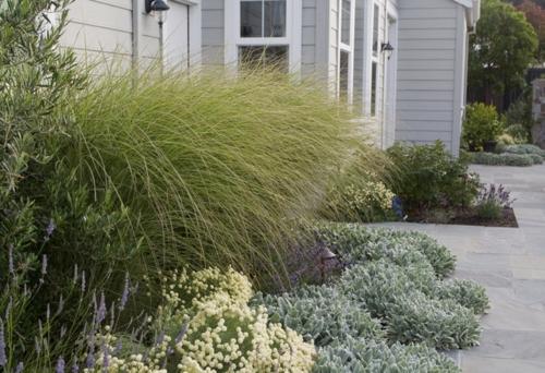 Schöne Gartengestaltung und Landschaftsbau pflanzenarten