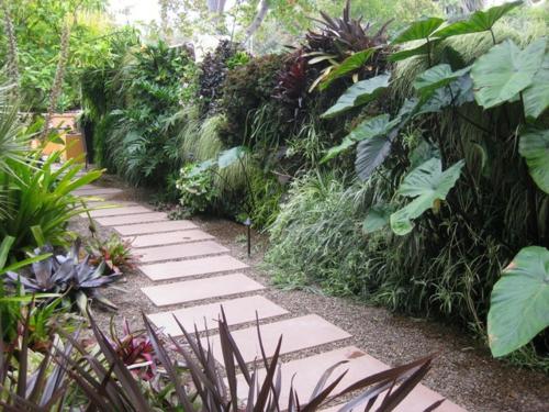 Schattengarten mit tropischen Pflanzen gestalten pflaster fußweg