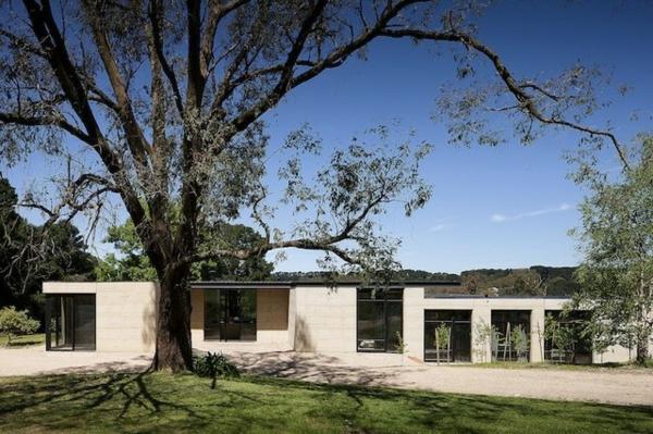 australisches haus design gigantischer baum große grüne fläche