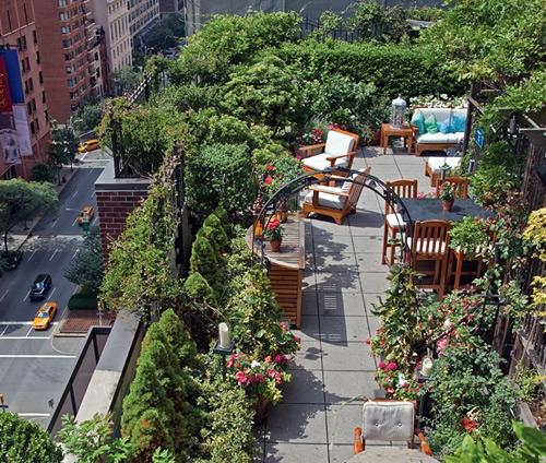dachgarten design stadt pflanzen sichtschutz natur holz möbel