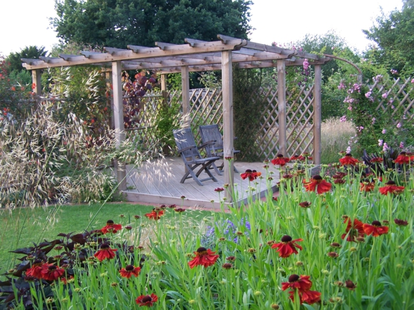 eine tolle zierpflanze mit sonnenbraut bl ht ihr garten im sp tsommer. Black Bedroom Furniture Sets. Home Design Ideas