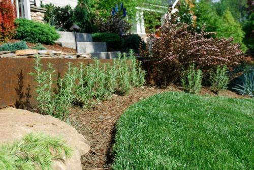 großartige pflanze für ihren garten mulch und gras