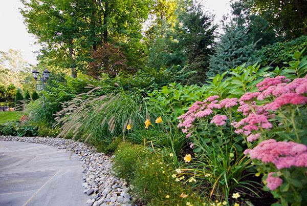modernes landschaftsbau design üppige vegetation