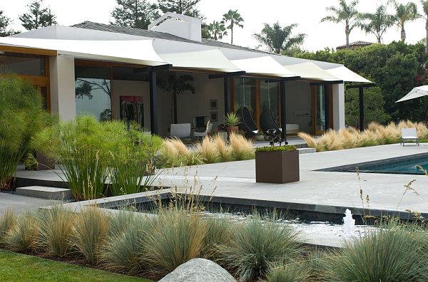 modernes landschaftsbau design hohe gräser außen pool