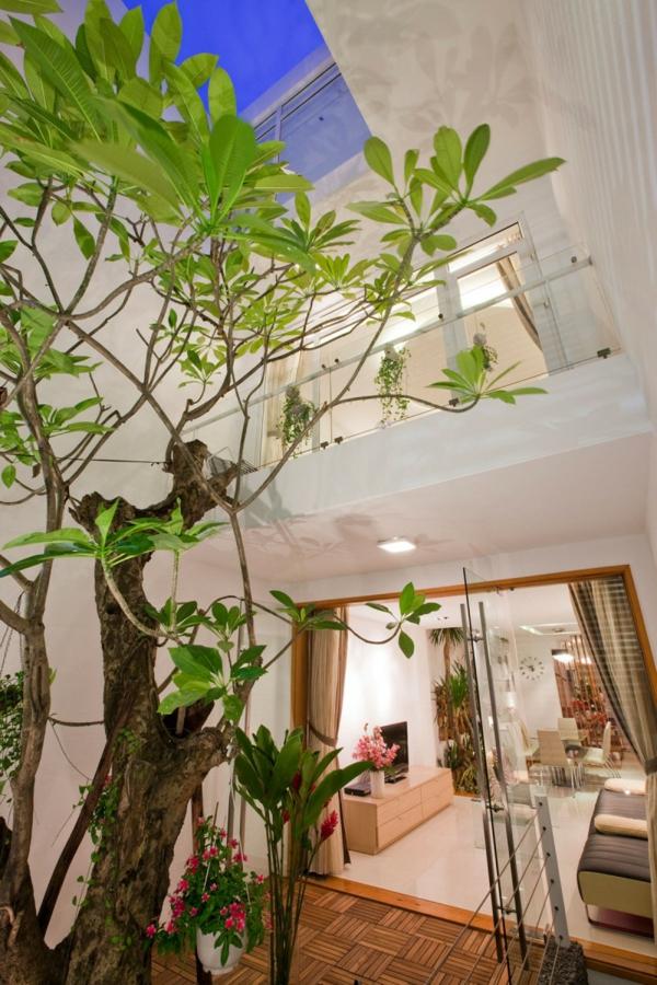 nachhaltiges haus desig dachfenster verglaste türen