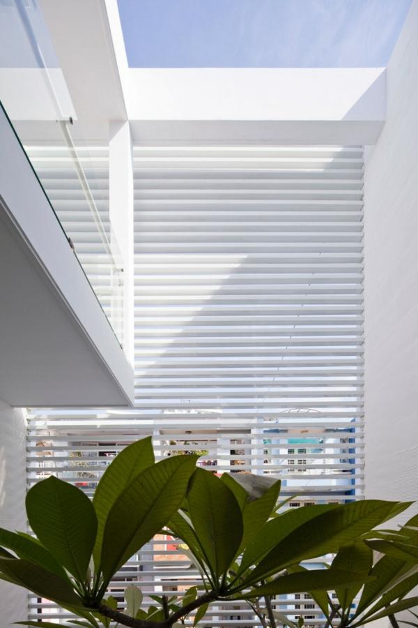 nachhaltiges haus design viel sonnenlicht und grüne blätter