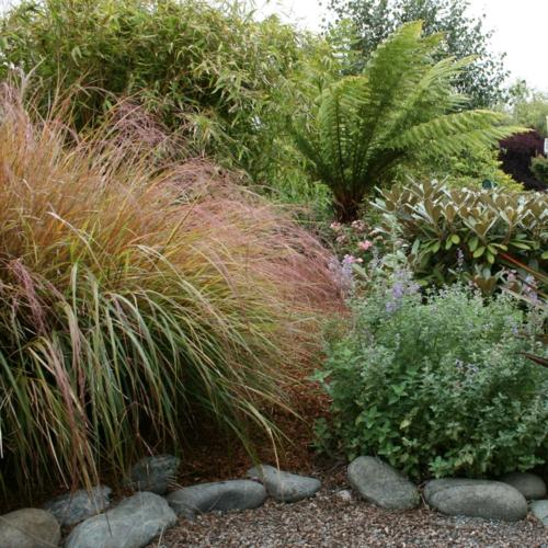 schattengarten tropisch pflanzen anbau idee gestaltung