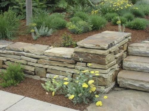 steinplatten im garten mulch subtropische pflanzen