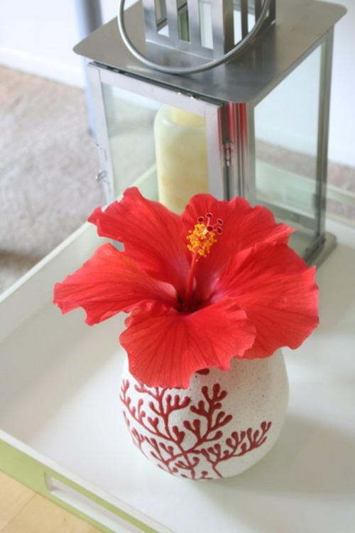 tropisches Ambiente zu Hause glas vase blumen rot