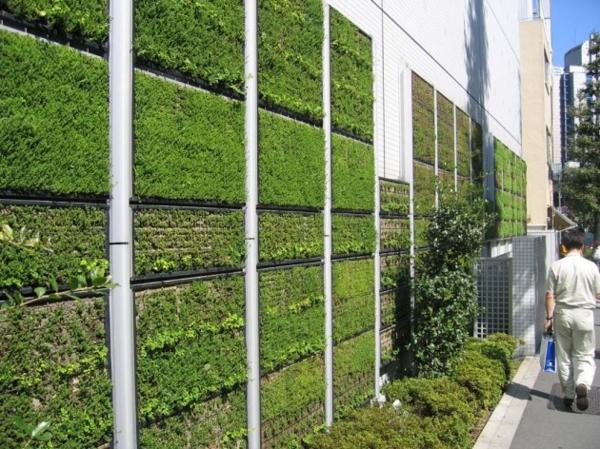unglaubliche vertikale gärten geometrisch geordnet