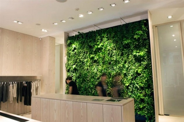vertikale gärten grüne wand im geschäft