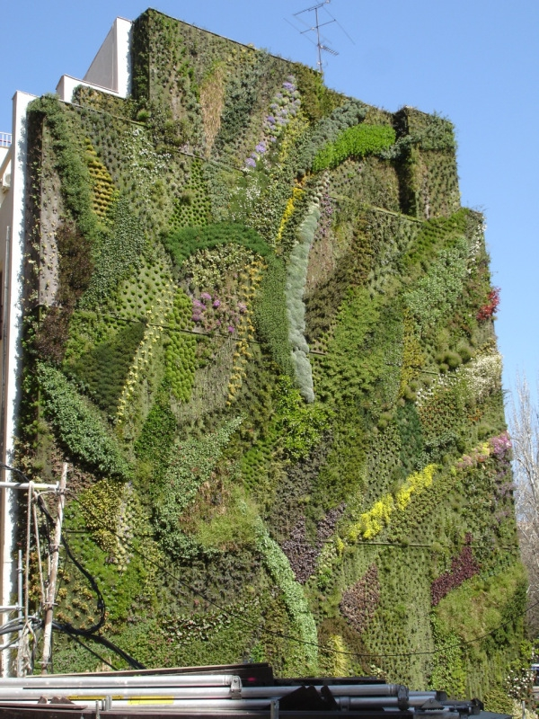 vertikale gärten lebendige fassade