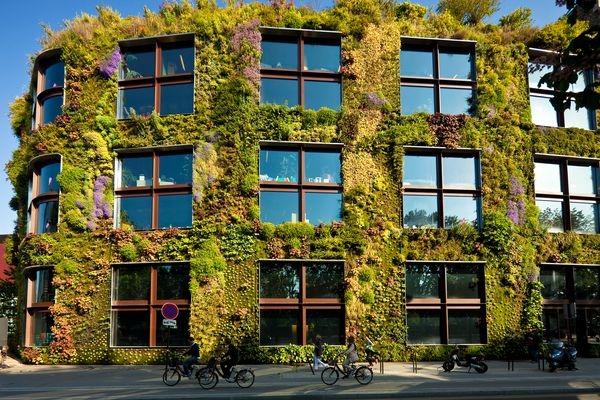 unglaubliche vertikale gärten natur bürohaus