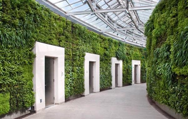 unglaubliche vertikale gärten viele eingangstüren