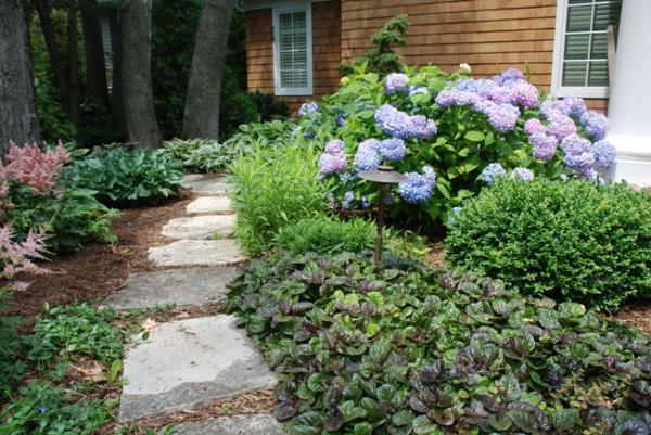 Bodendecker im Garten landschaftsbau immegrün stein pflaster