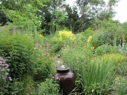 Schmetterlinge im Garten anlocken - erfreuen Sie Ihre Augen