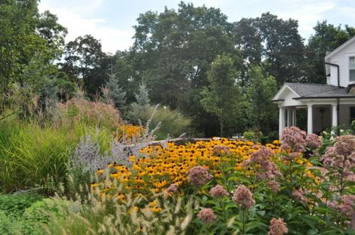 Schmetterlinge Im Garten Anlocken - Erfreuen Sie Ihre Augen Blumen Schmetterlinge Im Garten