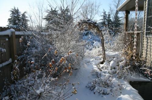 schmetterlinge im garten anlocken gestalten pflanzen winterbild schnee