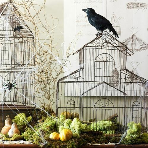 Gespenstige Dekoideen zu Halloween vogelkäfige