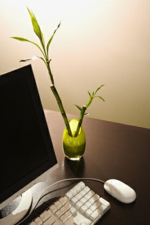 Klassische und moderne Dekoelemente bei der Büroeinrichtung frisches ambiente