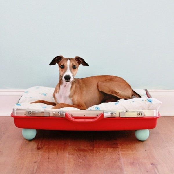 Trendy Möbel aus alten Koffern zum Selbermachen hundebett rot