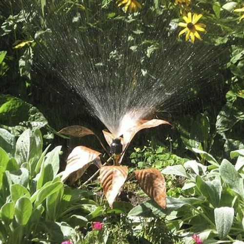 coole designs von haushaltswaren bewässerungsanlage