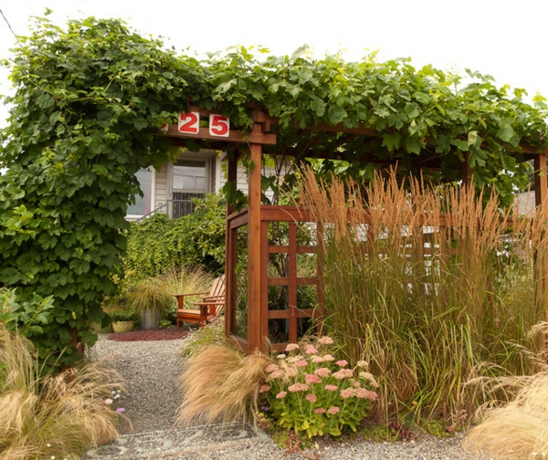den vorgarten neu gestalten gemütlich mit rebe