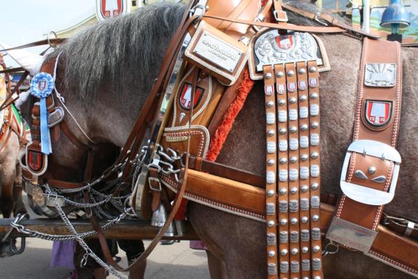 deutschland feiert das oktoberfest bunt verzierte pferde