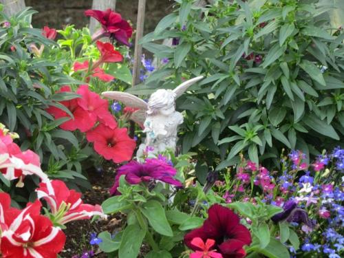den garten günstig gestalten: 5 fragen, welche jeder einkäufer stellt, Garten ideen