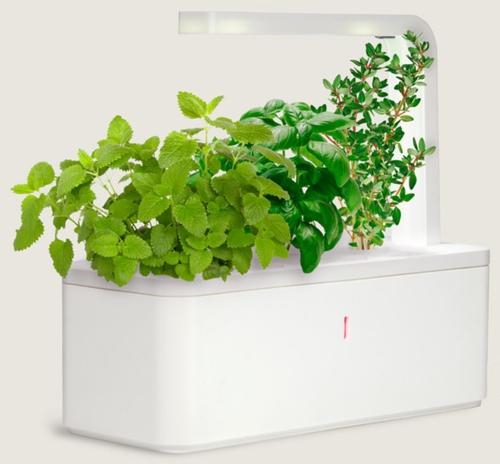 high-tech pflanzen geräte intelligenter kräutergarten