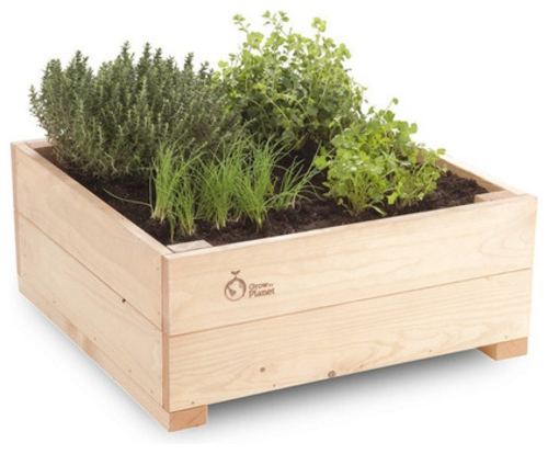 high-tech pflanzen geräte kräuterkasten