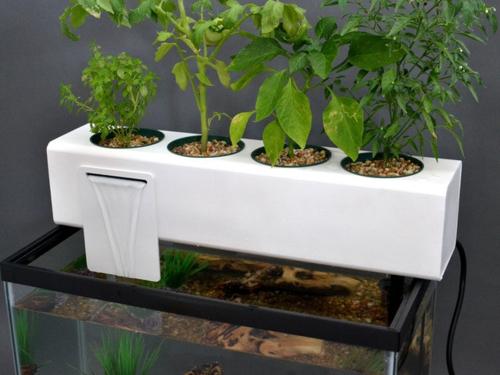 high-tech pflanzen geräte mit aquarium