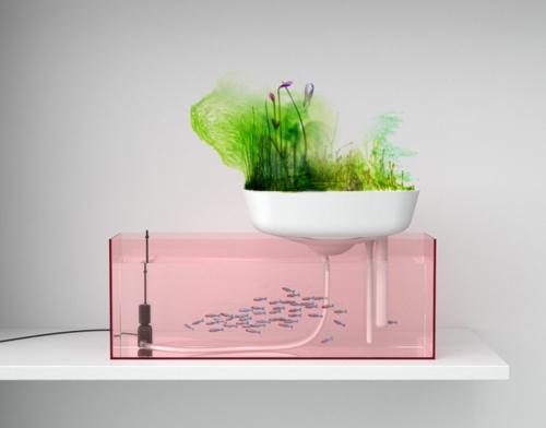 high tech pflanzen geräte schwimmender garten mit fischen