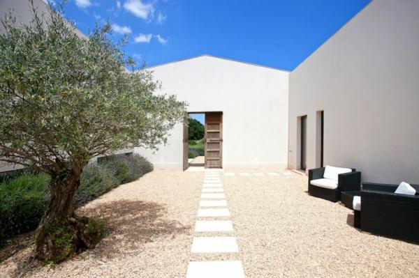 luxus ferienvilla auf mallorca der eingang mit olivenbaum