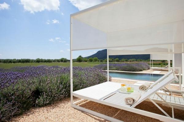 luxus ferienvilla auf mallorca weiße lounge lavendel blüten