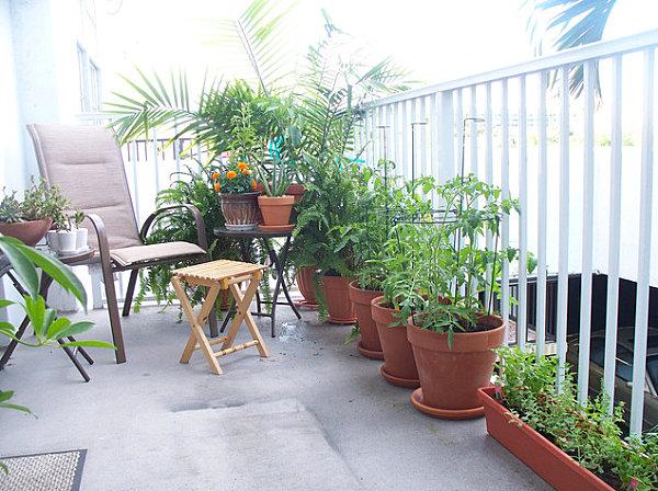terrassengestaltung mit pflanzen keramik blumentöpfe