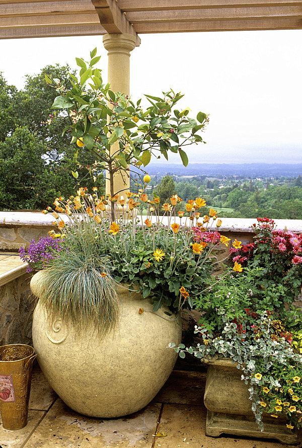 terrassengestaltung mit pflanzen kugeliger pflanzentopf aus lehm