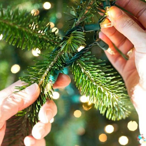 Den weihnachtsbaum schm cken sind sie bereit f r die for Weihnachtsbaum arten