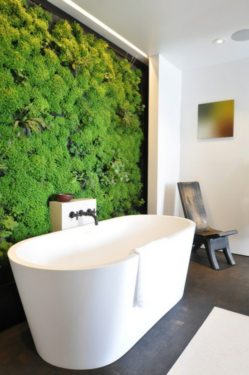 Die Zimmerpflanze Bubikopf schafft grüne Akzente gemälde vertikaler garten