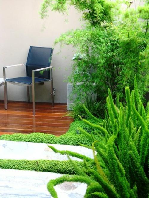 Die Zimmerpflanze Bubikopf schafft grüne Akzente stuhl holzbodenbelag garten