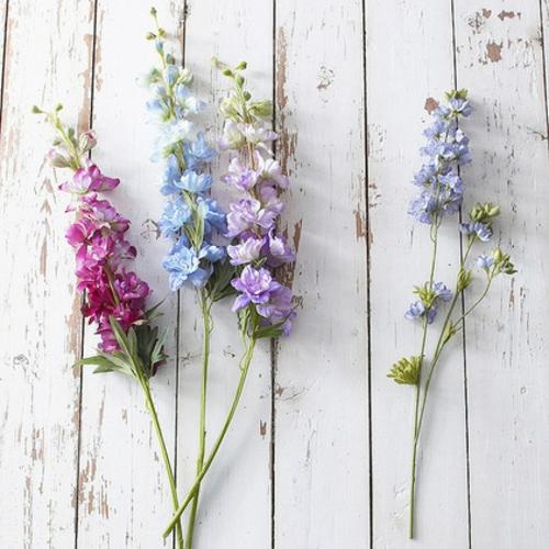 Garten im englischen Stil pflanzen frische bunt blüten delphinium