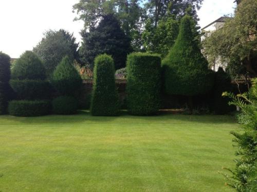Magischer englischer Stadtgarten gestaltung gartenkunst strauch