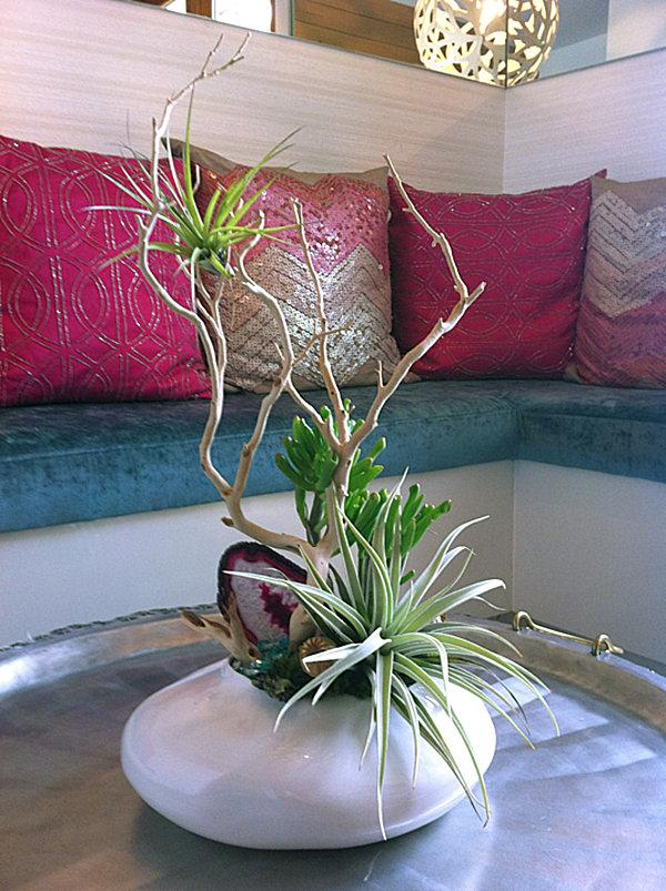 Haben Sie Exotische Pflanzen Zu Hause Eine Außergewöhnliche Deko