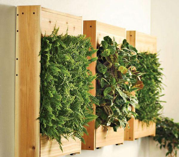 hängende blumentöpfe zimmerpflanzen holzkiste wand deko