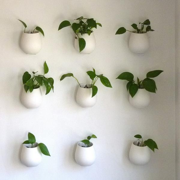 hängende blumentöpfe zimmerpflanzen luftig grüne wand deko