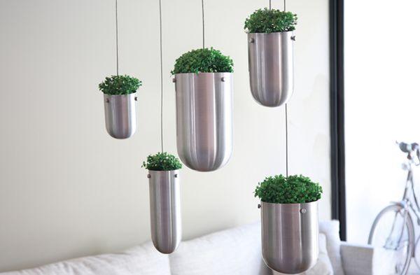 Zimmerpflanzen stehen Kopf   Blumentopf von Boeskke