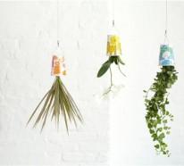 Hängende Blumentöpfe – coole Pflanzenideen für den Innenraum